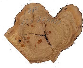 legno a fette